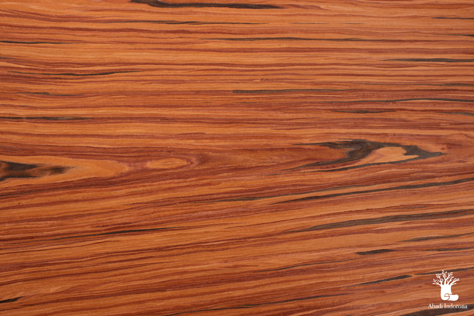 Red rosewood dcdy 150 veneer indonesia for The rosewood